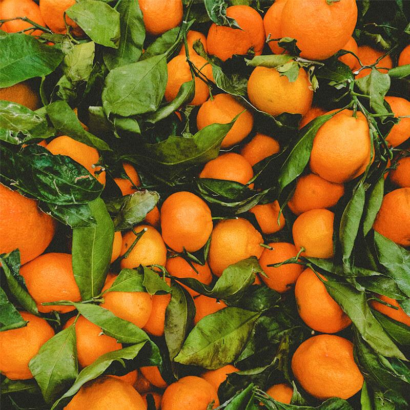 Økologiske appelsiner til Appelsin & gulerods med ingefær smoothie opskrift