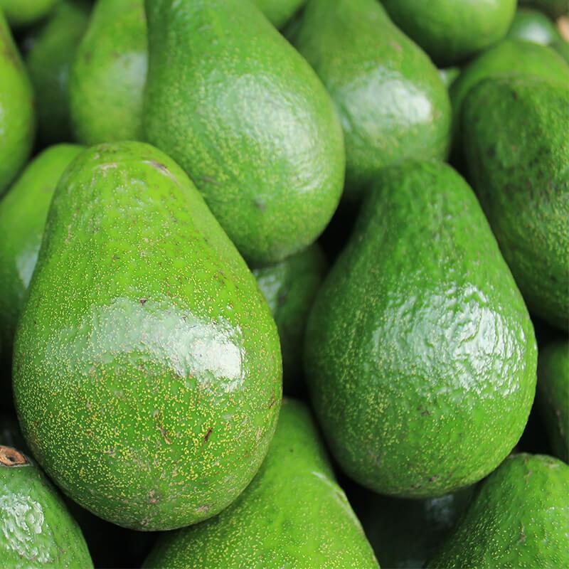 Økologiske Avocadoer til salat
