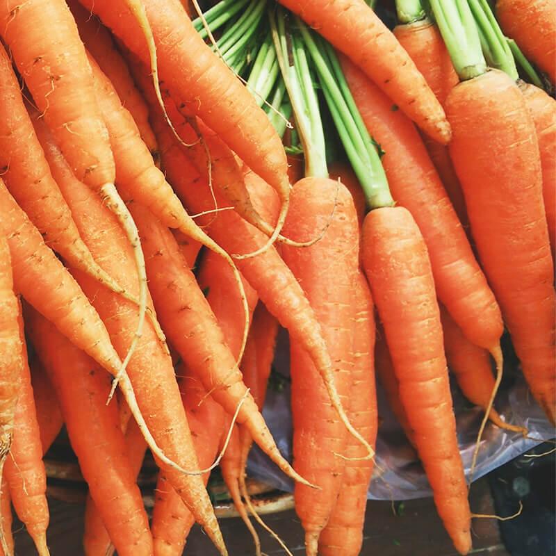 Økologiske gulerødder til Appelsin & gulerods med ingefær smoothie opskrift