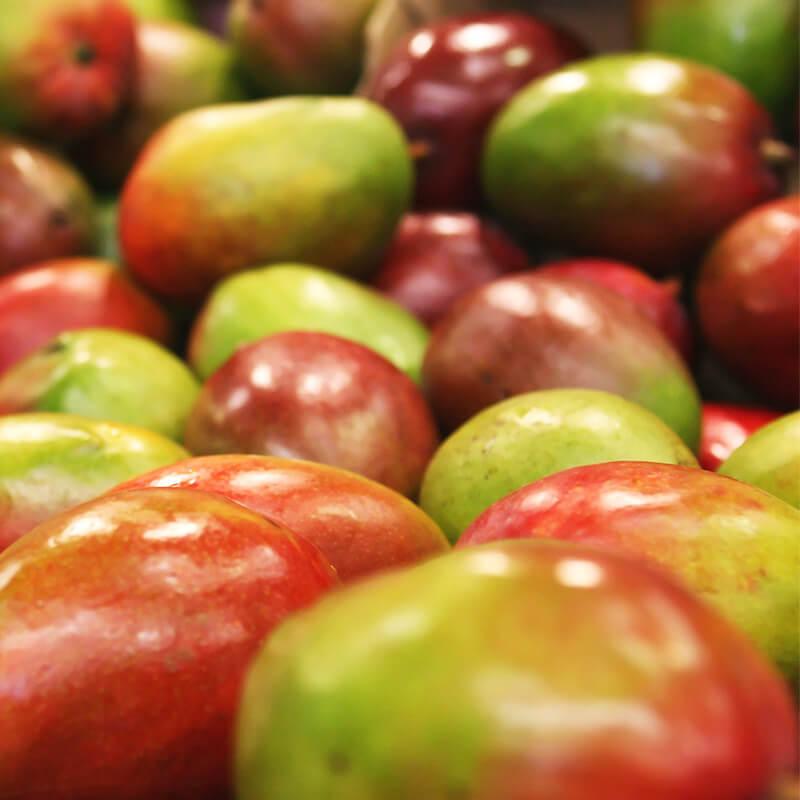 Økologiske mango til salat