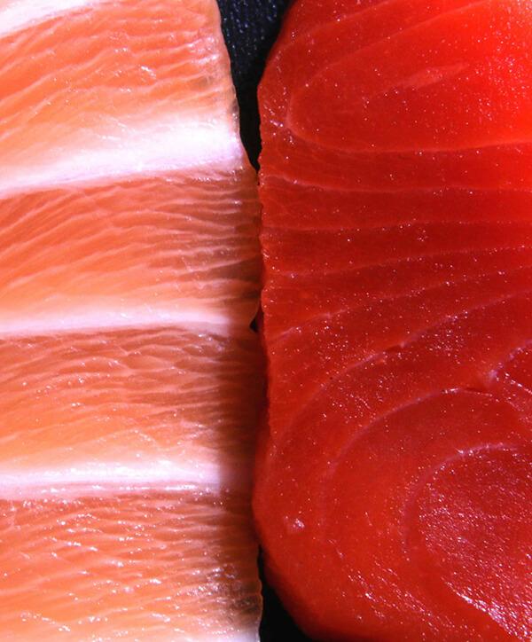 Stor forskel på fiskeopdræt og vildtfanget laks